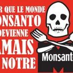 Marche contre Monsanto Octobre 2013