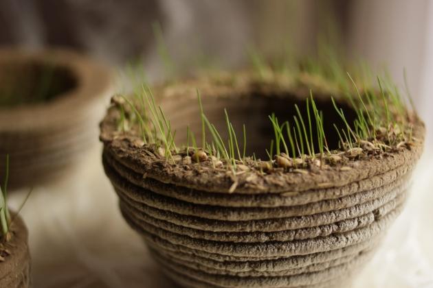 Projet d'impression 3D ecologique et biodegradable