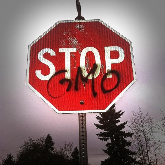 OGM : Monsanto retire le MON863 du marché européen