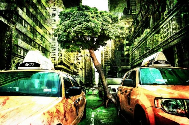 Fin du monde : Un algorithme évoque le déclin de l'humanité