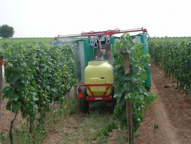 Epandage et pesticides dans les vignobles